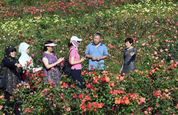 家乡云南省曲靖市富源县,在当地政府的支持下,出资建设多乐原风景区.